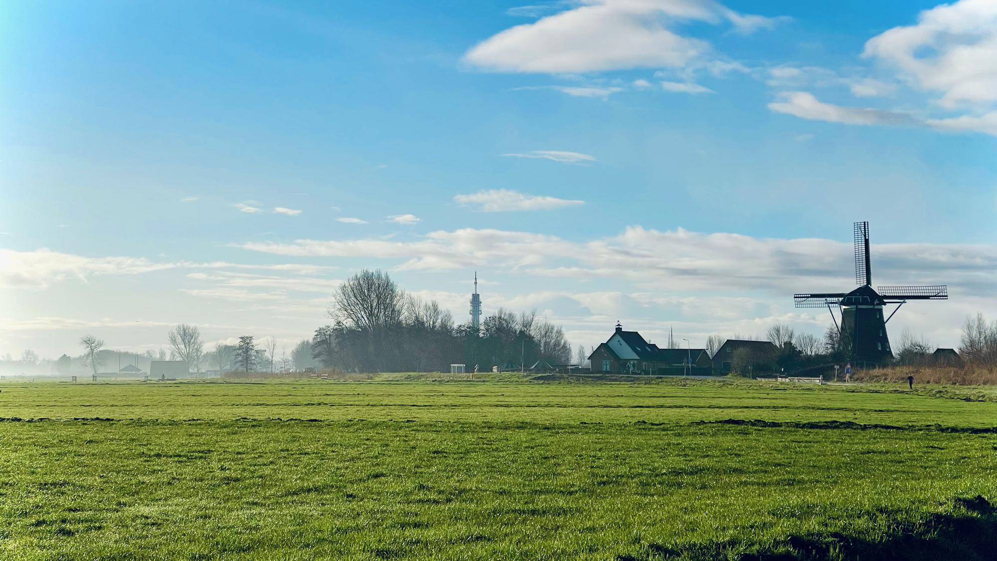 Polder and windmill